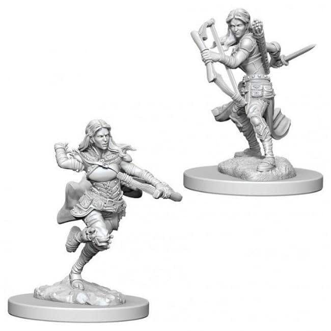 D&D NMU: Air Genasi Female Rogue W4 Miniatures WizKids